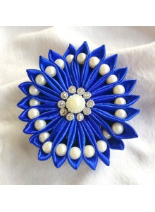 blue saree pin